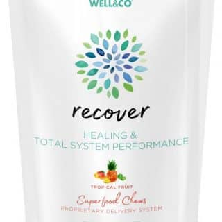 Recover 60 Superfood Chews